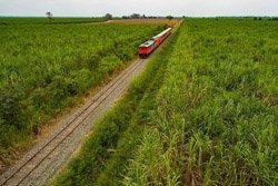 Bahnreisen Kueste Ecuador