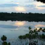 Abendstimmung im Amazonas, Ecuador