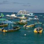 Hafen Galapagos