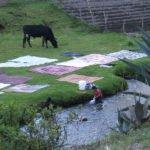 Wäschewaschen im Fluss bei Peguche, Otavalo