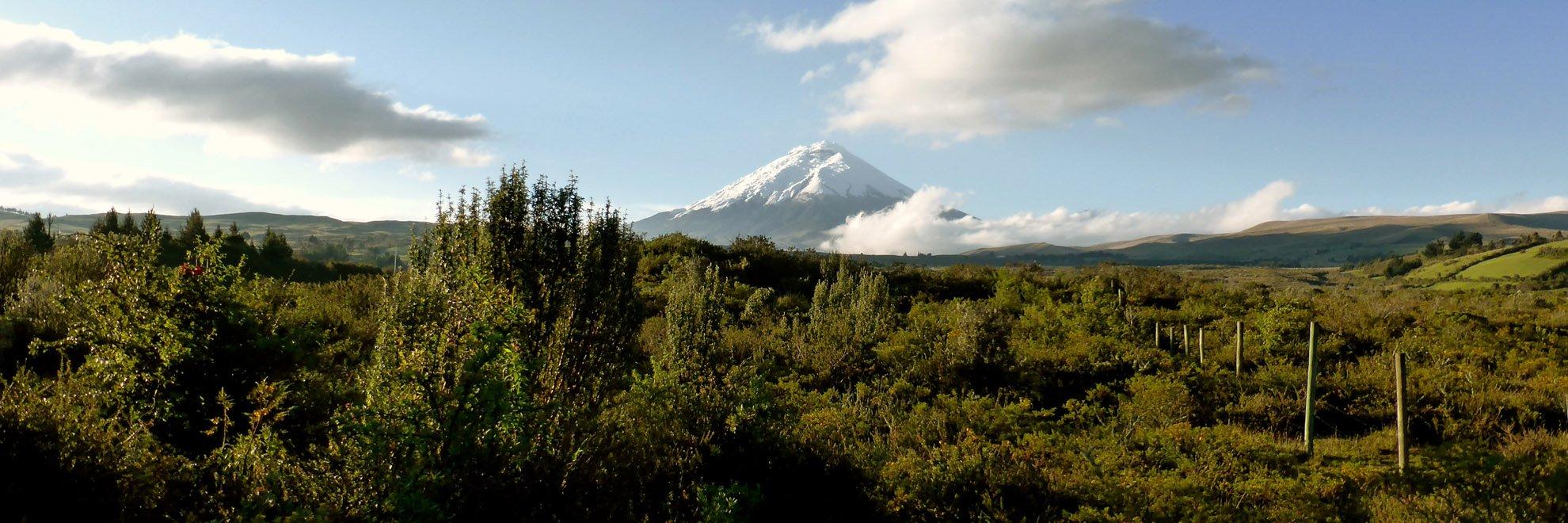 Ecuador Gruppenreise - Cotopaxi