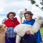 Hochlandszene Ecuador