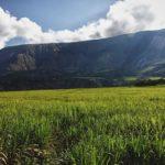 Landschaften Bahnreise Ecuador